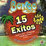 Bongo 15 Exitos Vol. 2