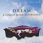 Liquid Mind Dream: A Liquid Mind Experience