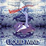 Liquid Mind Liquid Mind I: Ambience Minimus