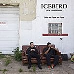 Icebird Going And Going. And Going. (Feat. Rjd2 & Aaron Livingston)