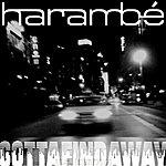 Harambe Gottafindaway