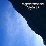 Tiger Forest Daybreak