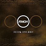 Finch Falling Into Place