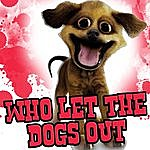 Dog Who Let The Dogs Out - Tribute