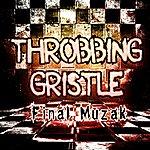 Throbbing Gristle Final Muzak