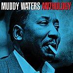 Muddy Waters Anthology