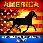 America A Horse With No Name - Live