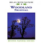 Natural Sounds Woodland Nightfall - Relax With Nature