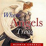 Medwyn Goodall Where Angels Tread
