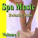 Nature Sounds Spa Music (Relaxing Rain) Volume 5