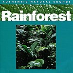 Natural Sounds Rainforest - Relax With Nature