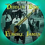 Elmore James Diddley Bow