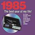 Paul Young The Best Year Of My Life: 1985