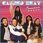 Canned Heat Canned Heat: Essentials