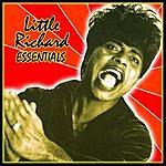 Little Richard Little Richard: Essentials
