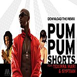 Mr. Vegas Pum Pum Shorts (Feat. Gyptian & Teairra Mari) - Single