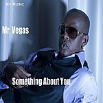 Mr. Vegas Something About You - Single