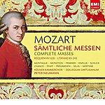Peter Neumann Mozart: Sämtliche Messen / Complete Masses