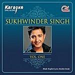 Instrumental Sukhwinder Singh Vol. 1