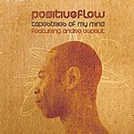 Positive Flow Tapestries Of My Mind Ft Andre Espeut - Single
