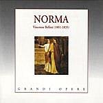 Maria Callas Bellini: Norma