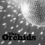 The Orchids The Way That You Move