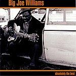 Big Joe Williams Absolutely The Best