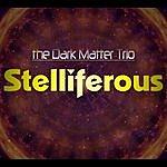 Dark Matter Stelliferous