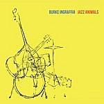 Burke Ingraffia Jazz Animals