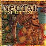 Jai Uttal Nectar: Live Kirtan & Pagan Remixes