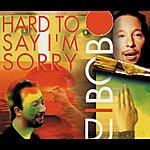 DJ Bobo Hard To Say I'm Sorry