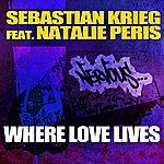 Sebastian Krieg Where Love Lives Feat. Natalie Peris