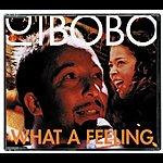DJ Bobo What A Feeling