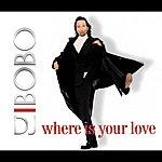 DJ Bobo Where Is Your Love