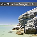 Wasis Diop From Senegal To Ibiza