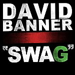 David Banner Swag - Single