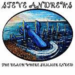 Steve Andrews The Beach Where Summer Ended
