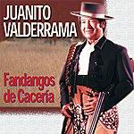 Juanito Valderrama Fandangos De Cacería