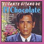 El Chocolate El Cante Gitano