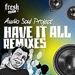 Audio Soul Project Have It All Remixes