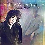 The Waterboys Sweet Dancer