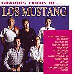 Los Mustang Los Grandes Exitos