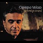 Caetano Veloso A Foreign Sound