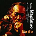 Thomas Mapfumo Exile