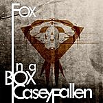 Casey Fallen Fox In A Box
