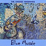 The Chicago Kingsnakes Blue Mosaic