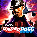 Lil Hood Underdogg