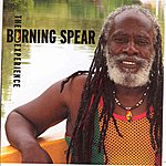 Burning Spear The Burning Spear Experience Vol 2