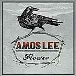 Amos Lee Flower