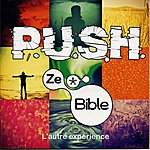 Push Ze Bible